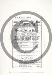 Metsaülema tütar_kava.pdf