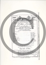Orlow_kava.pdf