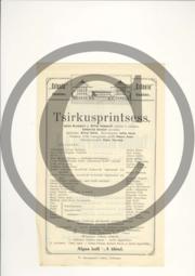 Tsirkusprintsess_kava1.pdf