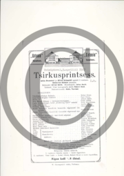Tsirkusprintsess_kava4.pdf