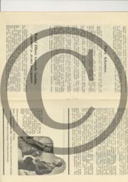 Laksmi_kava3.pdf